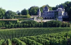 vineyards China